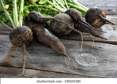 imperfect organic healthy black radishes with fresh green tops and roots on old wood background for genuine gardening, studio shot