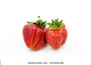 Imperfect Strawberry. Odd Ogranic Fruit. Red Sweet Berry Closeup. Vegetarian healthy Natural Diet. Summer vitamin Brekfast. Ugly Berry Raw Food. Strawberry Group