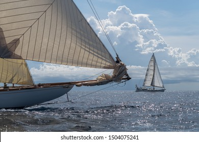 Imperia, Italy - September 7, 2019: Crew members aboard on sailboat Tuiga, flagship of the Monaco Yacht Club, during racing in Gulf of Imperia, Italian Riviera