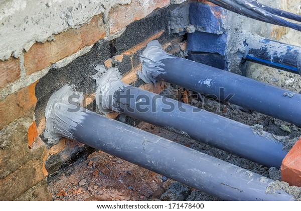Importance Rodentproof Construction Proper Temporary Rodent