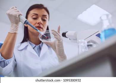 Important blood test. Serious smart scientist conducting a blood test and wearing a uniform
