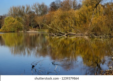 Impression of autumn with the water reflection on the lake. Macro photography of nature.