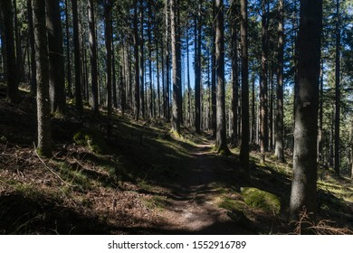 Impression of a hike through the Vosges along the GR5/E2 trail
