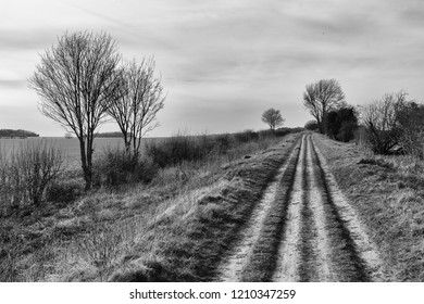 an impression of the Roman Road, Hiking Trail