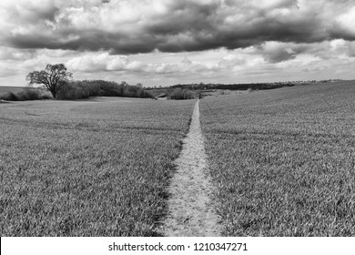 an impression of the Stour Valley Path, Hiking Trail