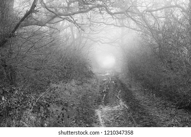 an impression of the Viking Way Trail, Hiking Trail