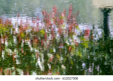 Impressionist picture, plants and flowers painted