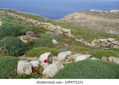 Impressions of the island Mykonos, Greece
