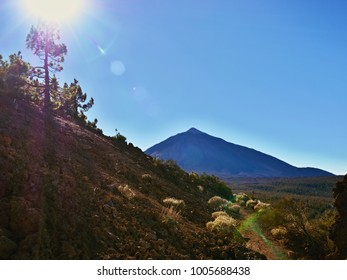 Impressive backlight shot at 2300 m at the foot of Mount Teide with a full view of Mount Teide and bizarre foreground