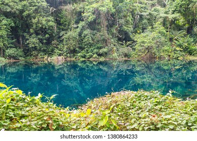 Impressive natural blue-colored pond in the middle of a forest in the Andes mountains. Barinas state, Venezuela.