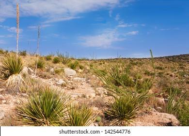 Impressive and scenic landscape in New Mexico near Carlsbad
