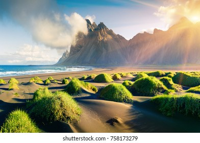 Impressive summer view of green dunes on the Stokksnes headland with Vestrahorn mountain on background, southeastern Iceland, Europe. Beauty of nature concept background.
