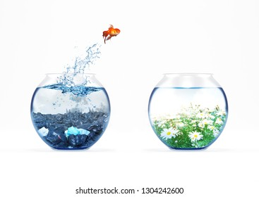 Improvement and moving concept with a goldfish jumping from a dirty aquarium to a clean one