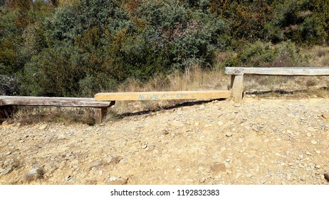 "improvised wooden benches with the graffiti ""alive at last"""