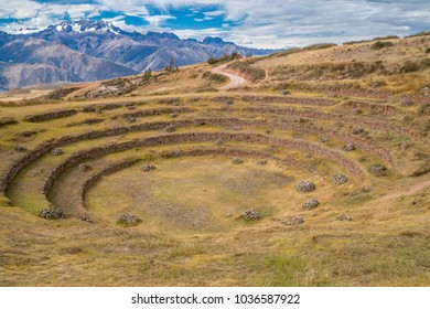 Inca agricultural terraces for developing and testing strains of crops