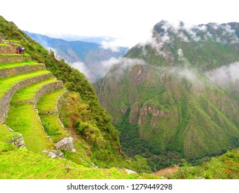Inca green terraces