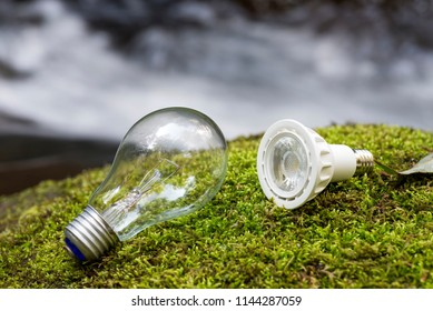 Incandescent light bulb and LED light bulb on a green moss in front of brook