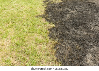 Incendies after burning grass and grass to where the fire was not able to reach