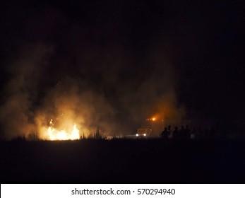 Incendio forestal en el bierzo. Forest fire
