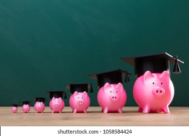Increasing Pink Piggy Banks With Graduation Hat Arranged In A Row