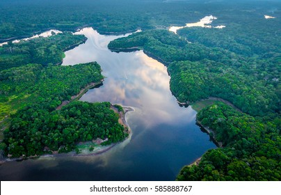 Incredible Amazonia forest from the sky (drone)