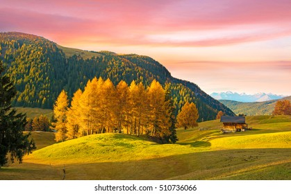Incredible autumn landscape with yellow larch in Alpe di Siusi in the Dolomites at sunset. The Italian Alps. (mental vacation, travel, holiday, inner peace, harmony, honeymoon - concept)