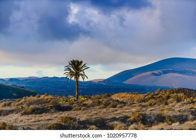 Incredible landscape on the island of lanzarote during calima. Canary Islands. Spain