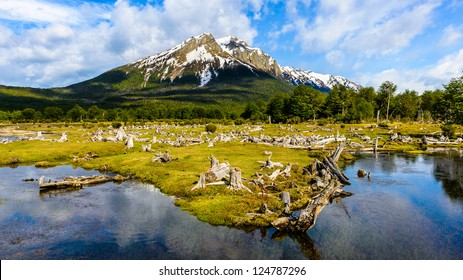 Incredible landscape of the Ushuaia National Park, Argentina, South America