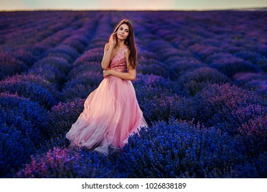 An incredible lavender field