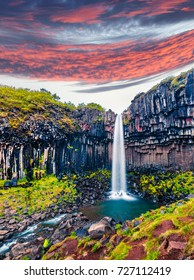 Incredible morning view of famous Svartifoss (Black Fall) Waterfall. Colorful summer sunrise in Skaftafell, Vatnajokull National Park, Iceland, Europe.