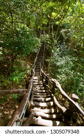Incredible mountain hikes deep in the forest, wooden planks, mini great wall of Taiwan, located in Taichung, Dakeng area