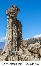 An incredible natural clay spire formation with plants growing at its peak at Moon Valley (Valle de la Luna) in La Paz in Bolivia. Erosion has worn away the mostly clay mountain forming tall spires.