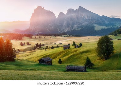 Incredible Nature Landscape. Bright Summer Scene at Alpe di Siusi - Seiser Alm, with Sassolungo - Langkofel mountain group in background during sunrise. Natural Background. Popular travel destination.