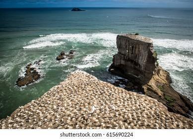 Incredible rugged coastline with waves crashing