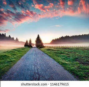 Incredible summer sunrise in Durmitor Nacionalni Park. Dramatic foggy scene of Montenegro countryside, Zabljak town location. Beautiful world of Mediterranean countries. Traveling concept background.
