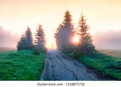 Incredible summer sunrise in Durmitor National Park with old country road. Stunning foggy view of Montenegro countryside, Zabljak town location. Beautiful world of Mediterranean countries.