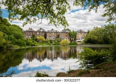Incredible urban park at London. Hampstead Heath.