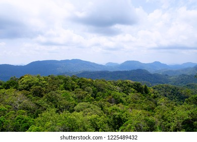 An incredible view of sprawling jungle and mountain peaks in Sinharaja Rainforest of Sri Lanka as seen from the summit of Mulawella.