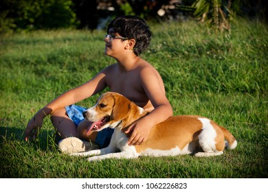 Indaiatuba, April 5, 2018 Unidentified shirtless child sitting next to his beagle puppy Bicolor on a sunny day on the lawn of an unidentified park