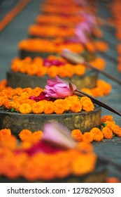 India, Bihar, Bodh Gaya, UNESCO World Heritage Site, Mahabodhi Temple Complex (Great Awakening Temple), Buddhist temple where Siddhartha Gautama, the Buddha, attained enlightenment, flowers offering