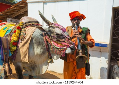 India, Goa, 15 March 2017. Musicians with a trained bull on the market