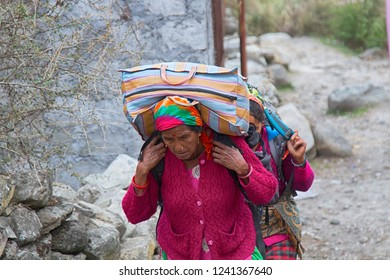 India, Himalayas - March 14, 2018: On a mountain trail in the Himalayas. Two elderly women in bright simple clothes carry heavy bags and backpacks of the Western sample on shoulders