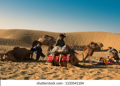 India, Jaisalmer - March 7, 2018: Camels dromedary will be Packed early in the morning. Securing the soft seat. The Great Indian desert (Thar)