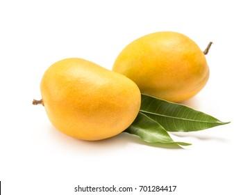 Indian Alphonso mango isolated on a white background