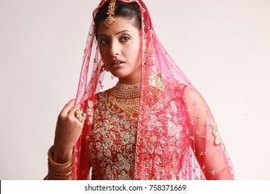 Indian bride in traditional bridal sari in studio lighting indoor