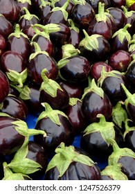 Indian eggplants (aubergines) produced in Turkey.