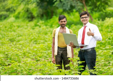 Indian farmer with agronomist at Cotton field , showing some information in laptop