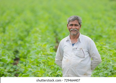 Indian farmer in cotton farm