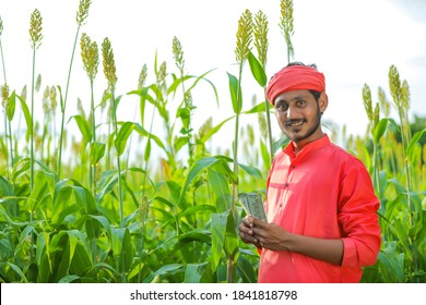 indian farmer counting and showing indian rupees at sorghum field