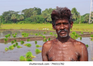 Indian Farmer Posing to Camera